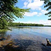 Summer Dreaming On Lake Umbagog  Art Print