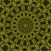 10696 Summer Fire Mask 54 Kaleidoscope 1 Art Print