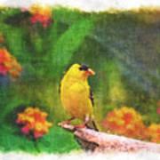 Summer Goldfinch - Digital Paint 4 Art Print
