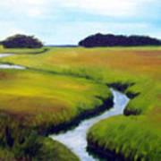 Summer Marsh Art Print