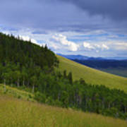 Summer On Kenosha Pass Art Print