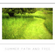 Summer Path And Tree Poster Art Print