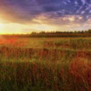 Summer Sunset - Waukesha Wisconsin  Art Print