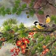 Summer Vine With Pine Tree Art Print