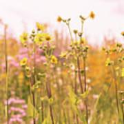 Summer Wildflower Field Of Sunflowers Art Print