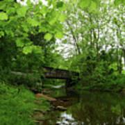 Summer Woodland And The Patapsco River Maryland Art Print