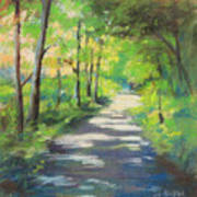 summer woods at Kenoza Lake Art Print by Leslie Alfred McGrath