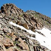 Summiting The Mount Massive Summit Art Print