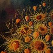 Sun Flowers And Physialis  Art Print