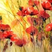 Sun Kissed Poppies Art Print