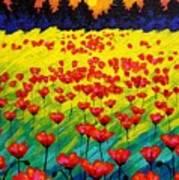 Sun Poppies Art Print