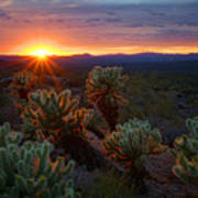 Sun Sets Over The Sonoran  Art Print