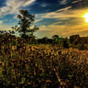 Sun Setting At Valley Forge Art Print