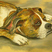 Sunday Arts Fair Dog In A Mood Print by Deborah Willard