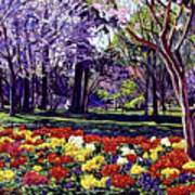 Sunday In The Park Art Print by David Lloyd Glover