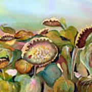 Sundown Flowers Art Print
