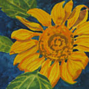 Sunflower - Mini Art Print