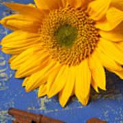 Sunflower And Skeleton Key Art Print by Garry Gay