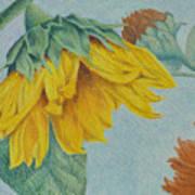 Sunflower Buddies Art Print