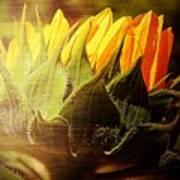 Sunflower Crown Art Print