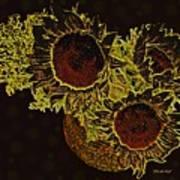 Sunflower Decor 10 Art Print