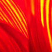 Sunflower Fire 3 Art Print