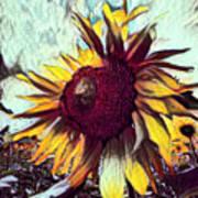 Sunflower In Deep Tones Art Print