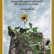 Sunflower Inspiration Art Print