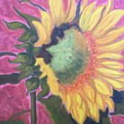 New Mexico Sunflower Art Print