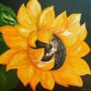 Sunflower Solo Art Print