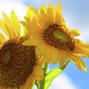 Sunflower Twins Art Print