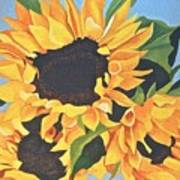 Sunflowers #3 Art Print