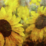 Sunflowers And Water Spots 2773 Idp_2 Art Print