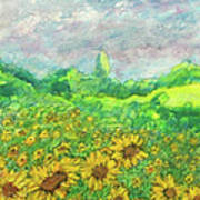 Sunflowers At Lop Burri Art Print