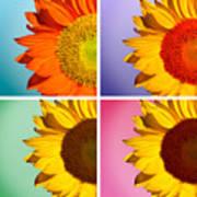 Sunflowers Collage Art Print