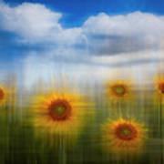 Sunflowers Dreamscape Art Print