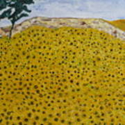 Sunflowers Field 1998. Art Print