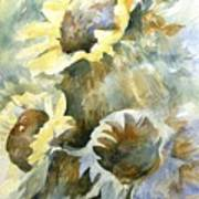 Sunflowers Ill Art Print