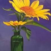 Sunflowers In A Green Bottle Art Print