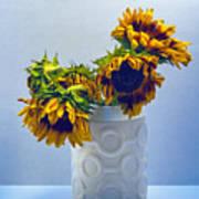 Sunflowers In Circle Vase Blue Tournesols Art Print