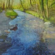 Sunlight In The Glen Art Print