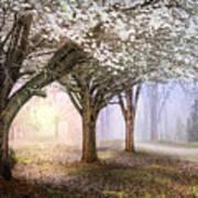 Sunlight In The Meadow Art Print
