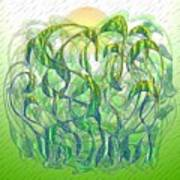 Sunlight On Wet Grass Art Print
