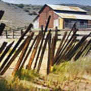 Sunlit Fence Art Print