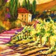 Sunlit Grapevines  Sold Art Print