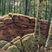 Sunlit Rocks Art Print