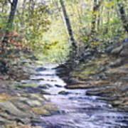 Sunlit Stream Art Print