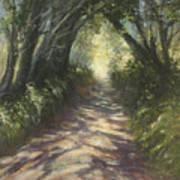 Sunlit Art Print