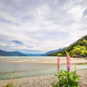Sunny Day At Kinloch Wharf In New Zealand Art Print