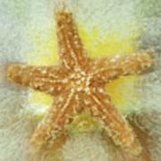 Sunny Star Art Print